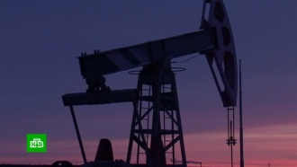 Паника: биржевики объяснили обвал на мировом рынке нефти