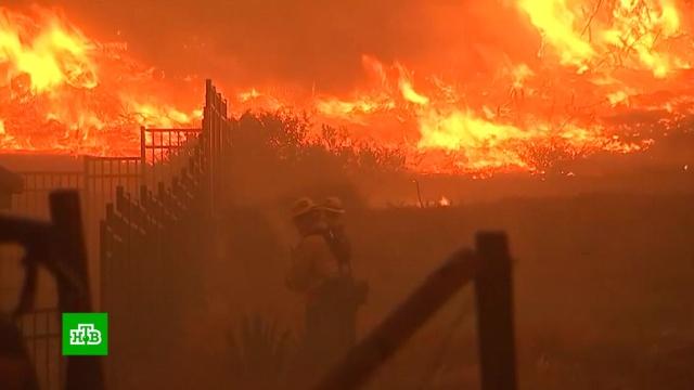 ВКалифорнии возросло число жертв самого смертоносного вистории пожара.США, лесные пожары, стихийные бедствия.НТВ.Ru: новости, видео, программы телеканала НТВ