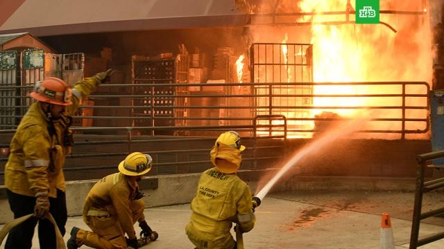 Число жертв пожаров в Калифорнии возросло до 58.Спасатели обнаружили тела еще восьми погибших в результате лесных пожаров, бушующих в штате Калифорния. Об этом сообщил шериф округа Бьютт Кори Хонеа. Таким образом, общее число жертв возросло до 58.США, лесные пожары.НТВ.Ru: новости, видео, программы телеканала НТВ