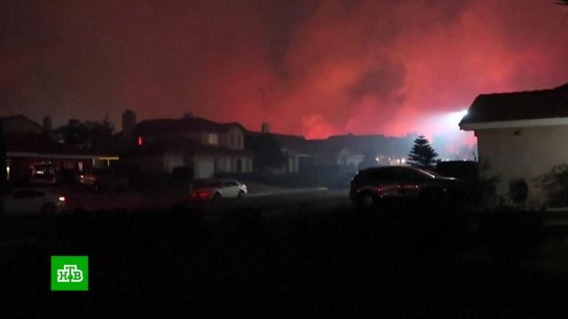 Число жертв пожаров вКалифорнии возросло до 58.США, лесные пожары.НТВ.Ru: новости, видео, программы телеканала НТВ