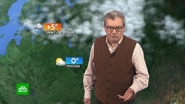 Прогноз погоды на 16 ноября.Москва, Санкт-Петербург, погода, прогноз погоды.НТВ.Ru: новости, видео, программы телеканала НТВ