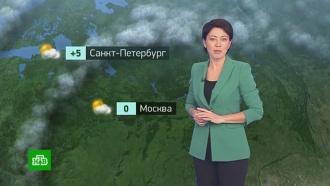Утренний прогноз погоды на 15ноября