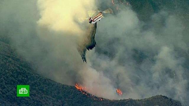 «Это катастрофа»: огненная стихия вКалифорнии продолжает наступать.США, лесные пожары, стихийные бедствия.НТВ.Ru: новости, видео, программы телеканала НТВ