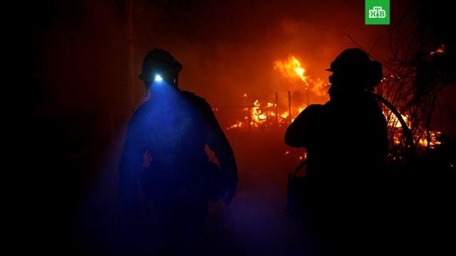 Число жертв пожаров в Калифорнии возросло до 74.Число жертв лесных пожаров, охвативших Калифорнию, возросло до 74. Тела восьми человек были обнаружены на севере штата, где бушует крупнейший пожар Camp. Об этом сообщил в пятницу шериф Бьютта Кори Хонеа.США, лесные пожары.НТВ.Ru: новости, видео, программы телеканала НТВ