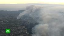 Пожары в Калифорнии оставляют от людей груды пепла.Официально подтвержденное число погибших от пожаров в Калифорнии сегодня выросло до 80.лесные пожары, США, Трамп Дональд.НТВ.Ru: новости, видео, программы телеканала НТВ