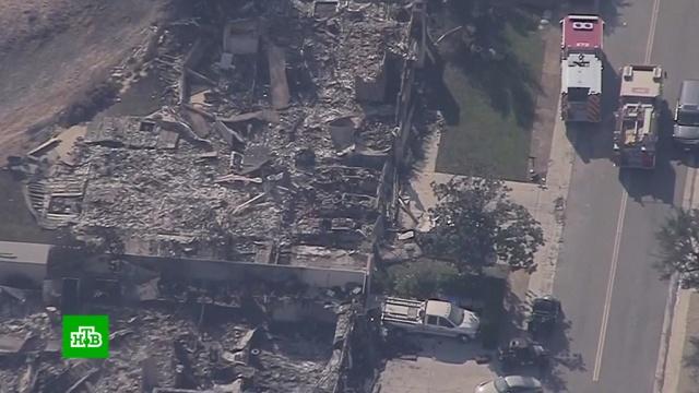 Пожары вКалифорнии оставляют от людей груды пепла.США, Трамп Дональд, лесные пожары.НТВ.Ru: новости, видео, программы телеканала НТВ
