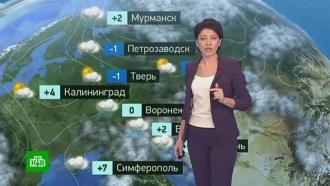 Утренний прогноз погоды на 20 ноября