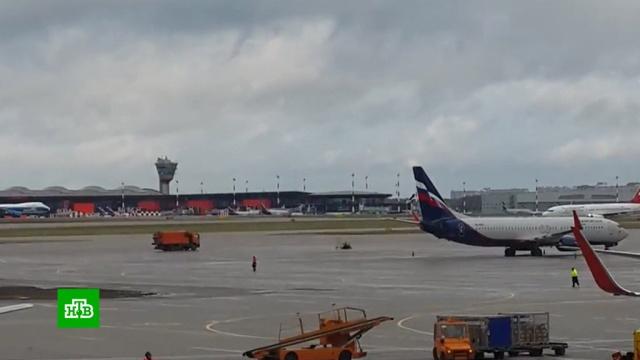 Расследование гибели пассажира вШереметьево займет 10дней.авиационные катастрофы и происшествия, аэропорт Шереметьево, несчастные случаи, расследование.НТВ.Ru: новости, видео, программы телеканала НТВ