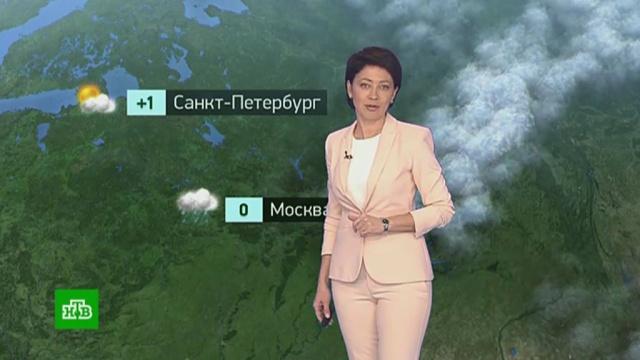 Утренний прогноз погоды на 21ноября.погода, прогноз погоды.НТВ.Ru: новости, видео, программы телеканала НТВ