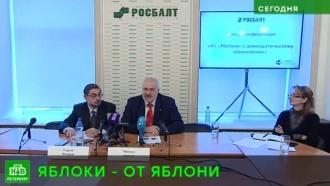 Десятки петербургских демократов распрощались с«Яблоком»