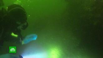 Российские дайверы исследовали остов легендарного речного ледокола