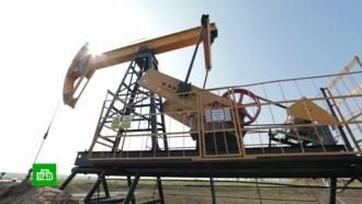 Члены ОПЕК договорились осокращении добычи нефти