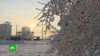 Аномальные морозы вСибири убили двух человек