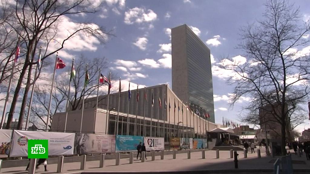 Генассамблея ООН отклонила резолюцию, осуждающую ХАМАС за обстрелы Израиля.Израиль, ООН, Палестина, США, ХАМАС.НТВ.Ru: новости, видео, программы телеканала НТВ