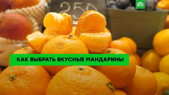 Оранжевое настроение: как правильно выбирать мандарины.ЗаМинуту, продукты.НТВ.Ru: новости, видео, программы телеканала НТВ