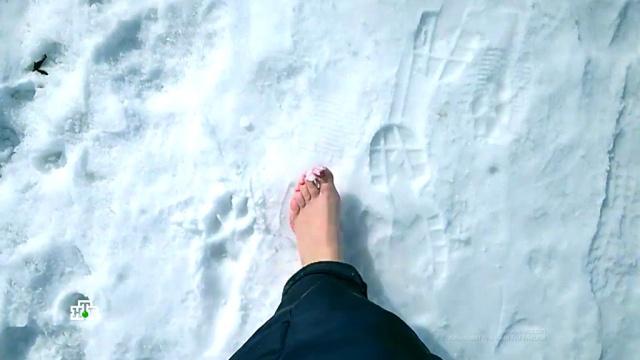 Обувные хитрости: как в мороз сохранить ноги в тепле и избежать простуды.болезни, гаджеты, здоровье, зима, изобретения, морозы.НТВ.Ru: новости, видео, программы телеканала НТВ
