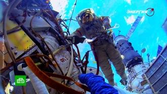 Космонавты в прямом эфире обследуют дыру в обшивке МКС.космонавтика, космос, МКС, ремонт, Роскосмос.НТВ.Ru: новости, видео, программы телеканала НТВ