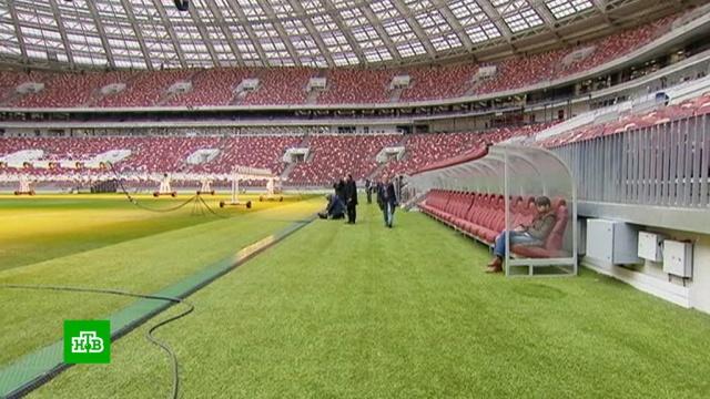 ФИФА признала «Лужники» лучшим стадионом вмире.Лужники, ФИФА, стадионы, футбол.НТВ.Ru: новости, видео, программы телеканала НТВ