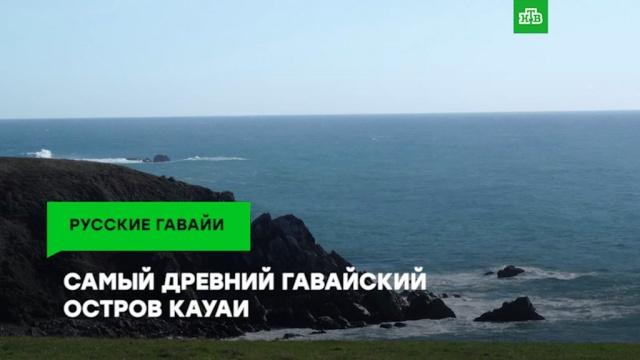 «Гавайи наши»: чем местным активистам не угодил форт «Русский»?ЗаМинуту, история.НТВ.Ru: новости, видео, программы телеканала НТВ