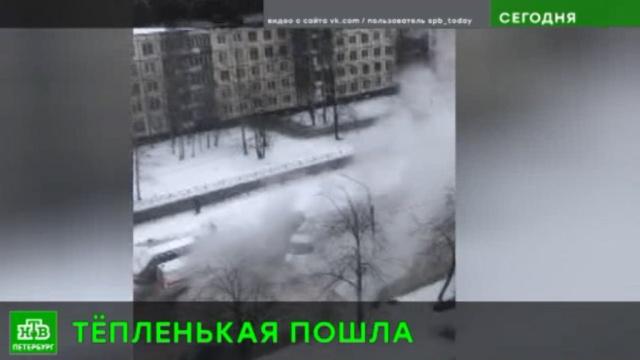 Квартал на юго-западе Петербурга ошпарило кипятком.Санкт-Петербург, аварии в ЖКХ.НТВ.Ru: новости, видео, программы телеканала НТВ
