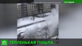Квартал на <nobr>юго-западе</nobr> Петербурга ошпарило кипятком