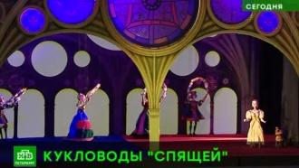 ВПетербурге марионеток научили танцевать «Спящую красавицу»