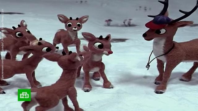 Конец зимней сказке: вСША запрещают леденцы иновогодние мультфильмы.Новый год, Рождество, США, торжества и праздники.НТВ.Ru: новости, видео, программы телеканала НТВ