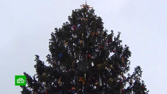 Главную новогоднюю елку страны украсили ретроигрушками.Москва, Новый год, торжества и праздники.НТВ.Ru: новости, видео, программы телеканала НТВ