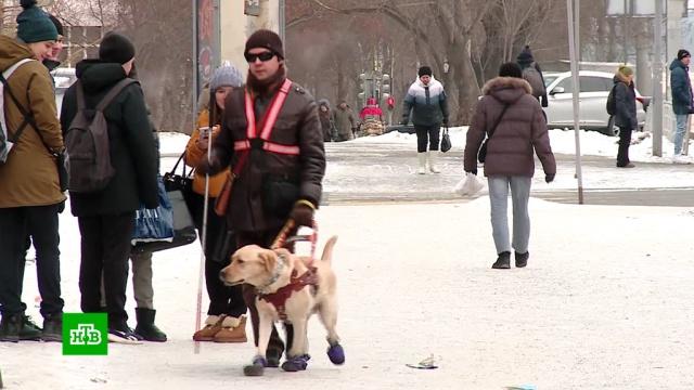 Висторию сугрозами слепому пассажиру автобуса вмешалась прокуратура.Екатеринбург, автобусы, инвалиды, общественный транспорт, скандалы, слепые.НТВ.Ru: новости, видео, программы телеканала НТВ