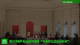 Петербуржцев решили поразить возрожденной «Чародейкой»