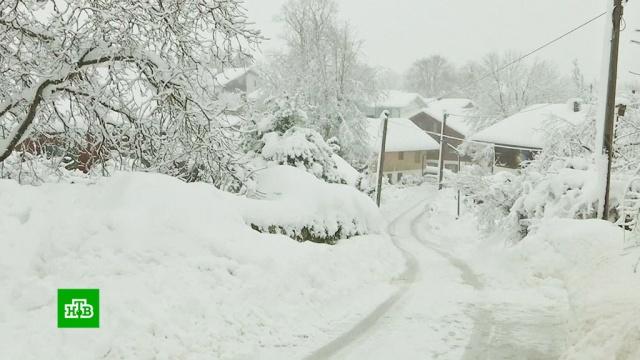 Снежный апокалипсис в Европе: двухметровые сугробы и закрытые магазины.Австрия, Германия, погода, снег, морозы, стихийные бедствия.НТВ.Ru: новости, видео, программы телеканала НТВ