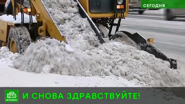 Погрязший в снегу Петербург экстренно зачищают от снега спецтехникой, лопатами и утюгами.ЖКХ, Санкт-Петербург, снег.НТВ.Ru: новости, видео, программы телеканала НТВ