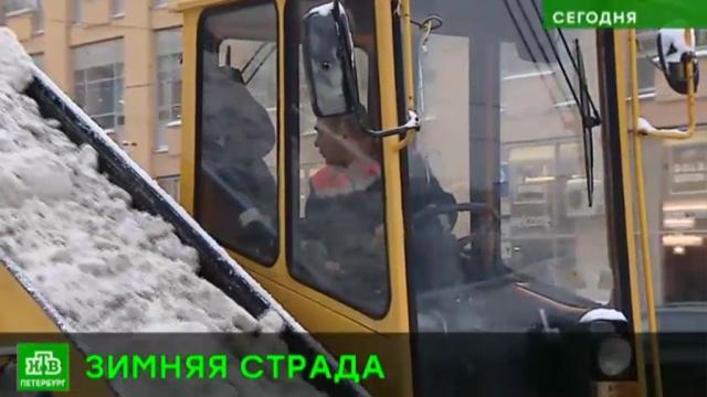 В Петербурге насчитали более 200 нарушений при очистке улиц от снега.ЖКХ, Санкт-Петербург, снег.НТВ.Ru: новости, видео, программы телеканала НТВ