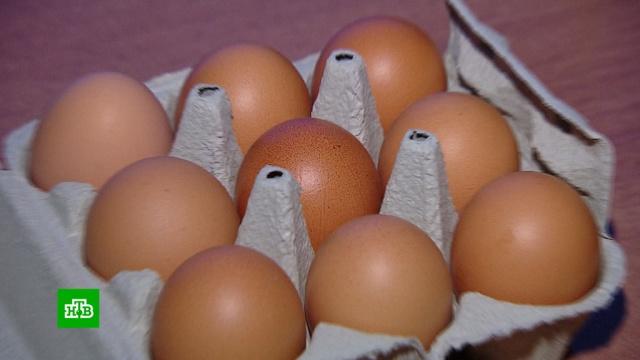 «Девяток» яиц: обман покупателя или маркетинговый ход.Интернет, еда, торговля.НТВ.Ru: новости, видео, программы телеканала НТВ