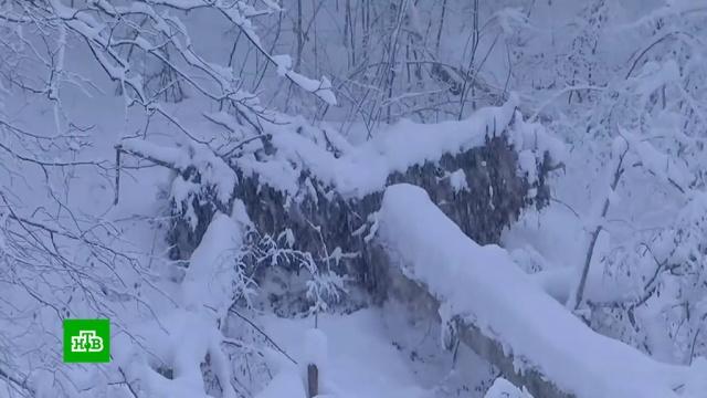 Элитные альпийские курорты превратились в зону стихийного бедствия.Европа, горные лыжи, курорты, погода, снег, стихийные бедствия.НТВ.Ru: новости, видео, программы телеканала НТВ