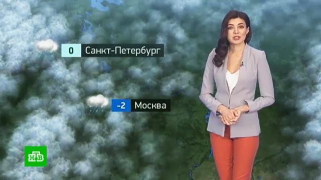 Утренний прогноз погоды на 14января.погода, прогноз погоды.НТВ.Ru: новости, видео, программы телеканала НТВ