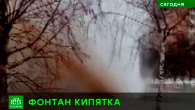 Дом на северо-западе Петербурга залил фонтан кипятка.Санкт-Петербург, аварии в ЖКХ.НТВ.Ru: новости, видео, программы телеканала НТВ