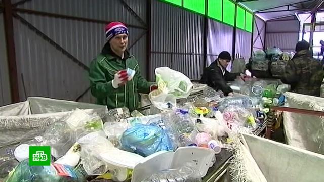 Сбор отходов в рамках мусорной реформы станет коммунальной услугой.мусор, экология.НТВ.Ru: новости, видео, программы телеканала НТВ