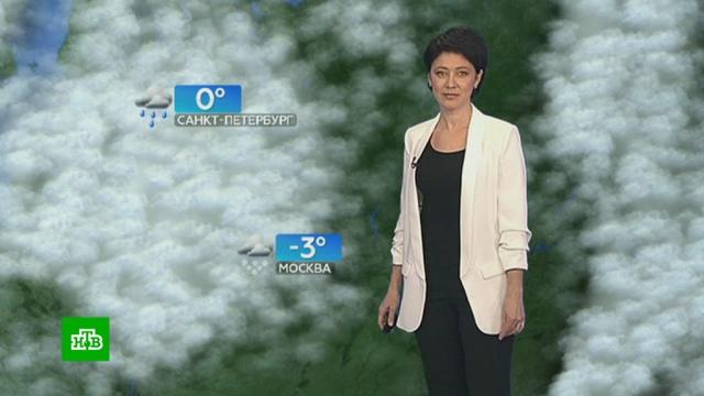 Прогноз погоды на 17января.зима, погода, прогноз погоды.НТВ.Ru: новости, видео, программы телеканала НТВ