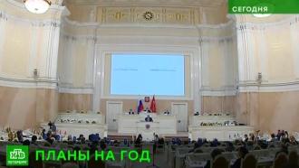 Петербургский парламент предлагает устанавливать датчики газа в новостройках и ужесточить наказание для живодеров