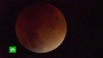 Мир увидел первую в2019году «кровавую» Луну