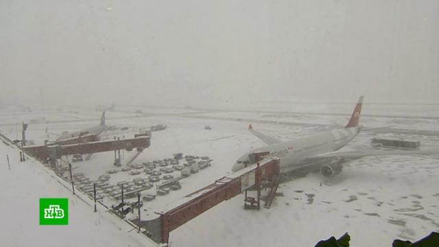 Мощный снегопад продлится в Москве до утра 28 января.Москва, зима, снег.НТВ.Ru: новости, видео, программы телеканала НТВ