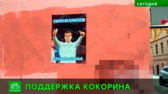Болельщики «Зенита» собирают подписи взащиту Кокорина