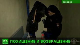 Специалисты Русского музея выезжают за найденной у похитителя картиной Куинджи
