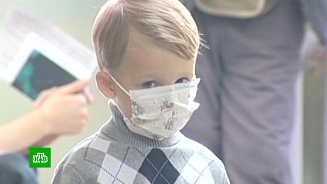 ВРоспотребнадзоре сообщили об эпидемии ОРВИ врегионах.НТВ.Ru: новости, видео, программы телеканала НТВ