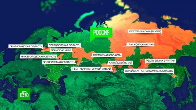 Эпидемический порог по гриппу превышен в 23 регионах РФ.грипп и ОРВИ, эпидемия.НТВ.Ru: новости, видео, программы телеканала НТВ