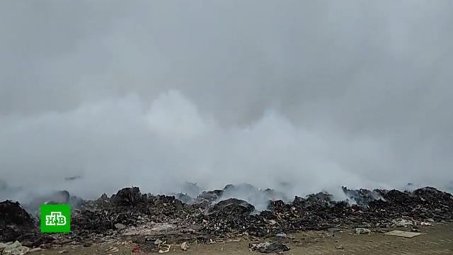 Площадь пожара на мусорном полигоне под Читой выросла до 2, 5га.Чита, мусор, пожары.НТВ.Ru: новости, видео, программы телеканала НТВ