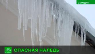 Упавший с козырька кусок льда покалечил девушку на северо-западе Петербурга