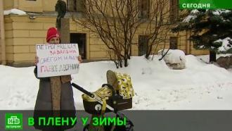 «Где все дворники?»: петербурженки спросили районных чиновников про плохо убираемый снег