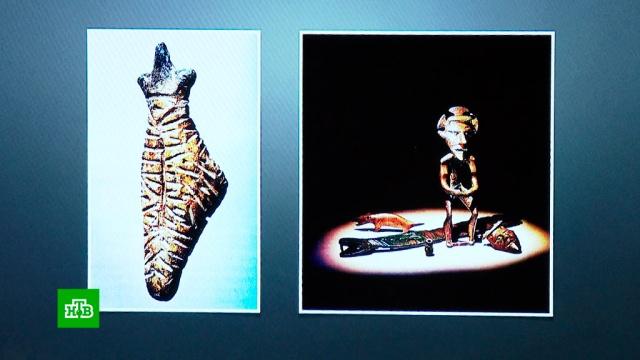 Ученые нашли вЧерной могиле два загадочных предмета.наука и открытия.НТВ.Ru: новости, видео, программы телеканала НТВ